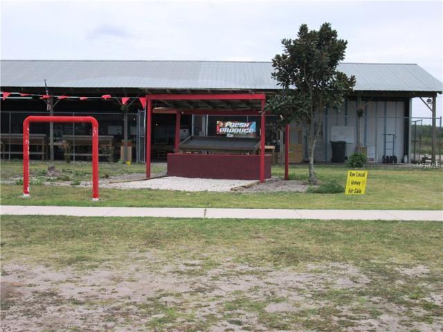 4810 James L Redman Parkway, Plant City, FL 33567 (MLS #T2869634) :: KELLER WILLIAMS CLASSIC VI