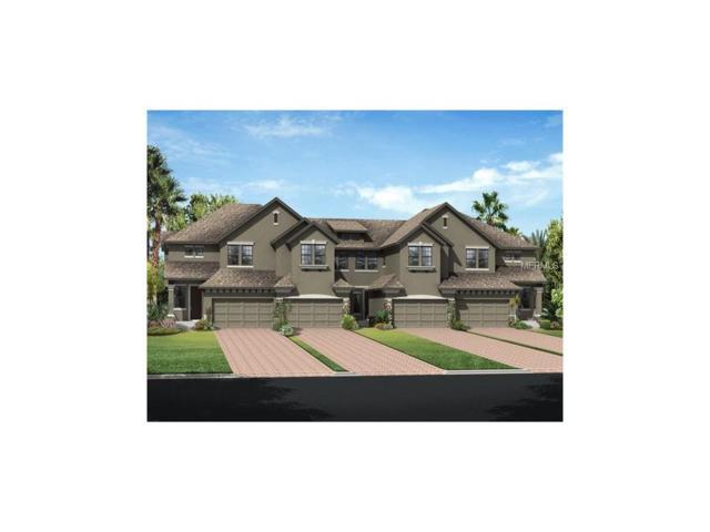 4766 Wandering Way, Wesley Chapel, FL 33544 (MLS #T2869833) :: The Duncan Duo & Associates