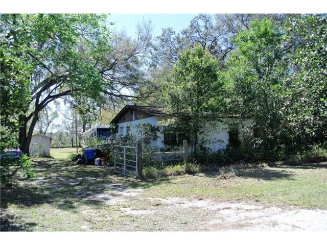 6610 Gunn, Tampa, FL 33625 (MLS #T2871020) :: The Duncan Duo & Associates