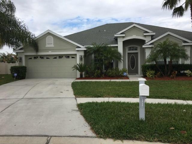 12359 Silton Peace Drive, Riverview, FL 33579 (MLS #T2871114) :: The Duncan Duo & Associates