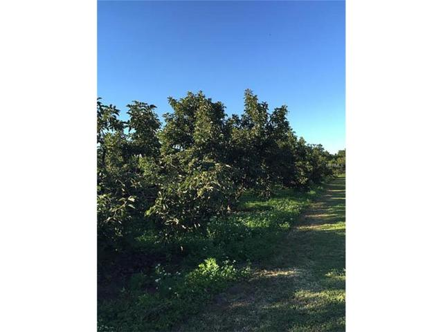 Lot 2 SW 169TH Avenue, GOULDS, FL 33170 (MLS #T2871188) :: Godwin Realty Group