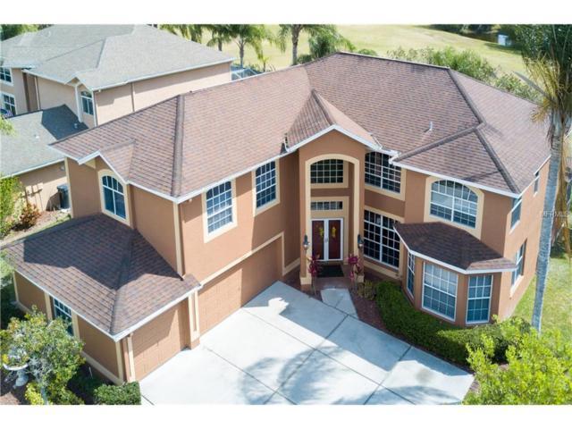 4342 Waterford Landing Drive, Lutz, FL 33558 (MLS #T2871404) :: The Duncan Duo & Associates
