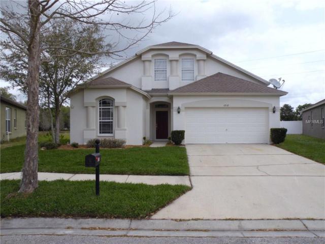 6839 Bluff Meadow Court, Wesley Chapel, FL 33545 (MLS #T2871629) :: The Duncan Duo & Associates