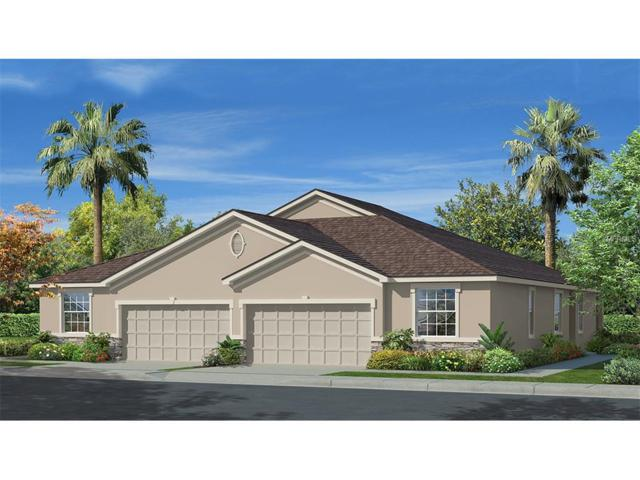 7720 Timberview Loop, Wesley Chapel, FL 33545 (MLS #T2872200) :: The Duncan Duo & Associates