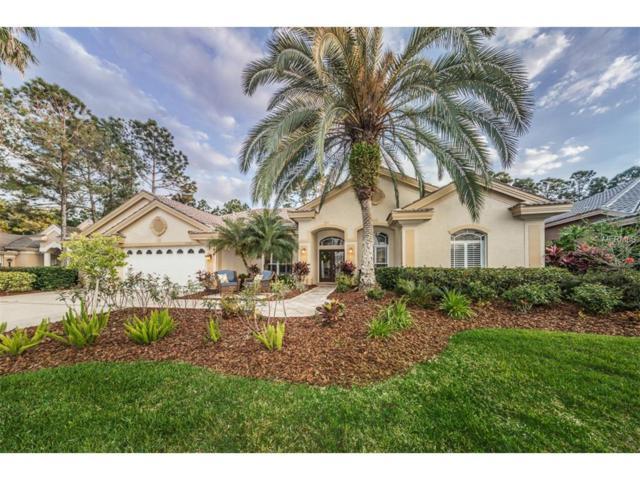 10561 Greensprings Drive, Tampa, FL 33626 (MLS #T2873430) :: The Duncan Duo & Associates