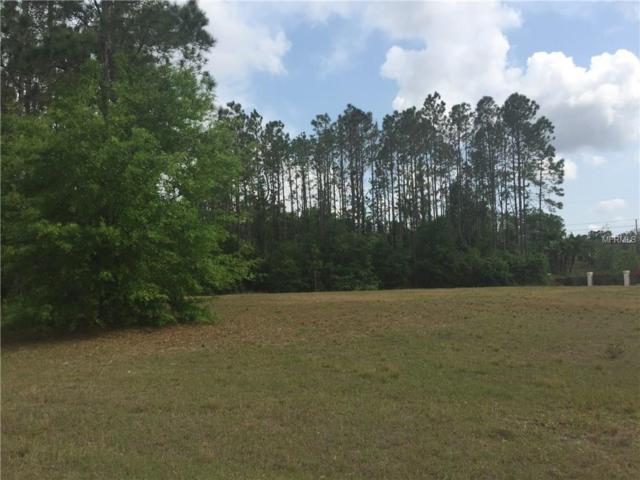 Comunidad De Avila, Lutz, FL 33548 (MLS #T2873801) :: Cartwright Realty