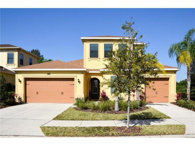 14207 Avon Farms Drive, Tampa, FL 33618 (MLS #T2873871) :: The Duncan Duo & Associates