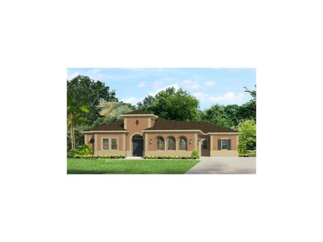 17920 Bramshot Place, Lutz, FL 33559 (MLS #T2874523) :: The Duncan Duo & Associates