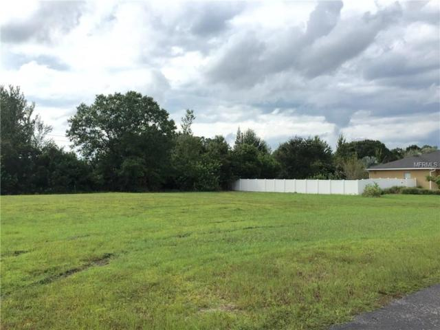 0 Aladar Court, Land O Lakes, FL 34639 (MLS #T2875001) :: Griffin Group
