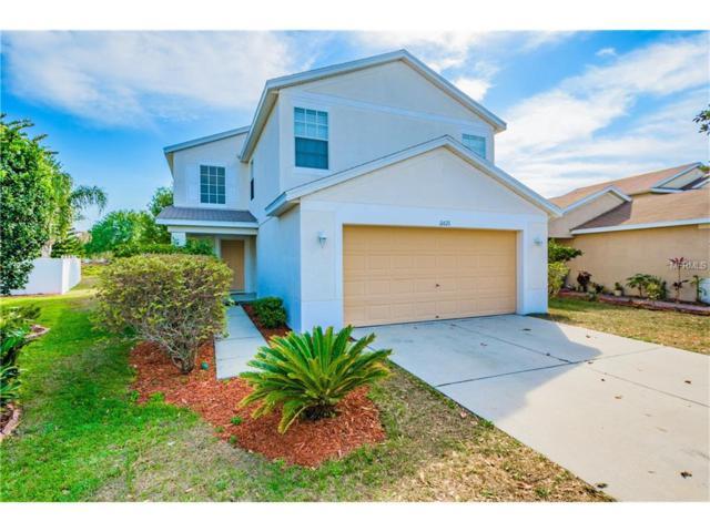 11621 Hammocks Glade Drive, Riverview, FL 33569 (MLS #T2875064) :: The Duncan Duo & Associates