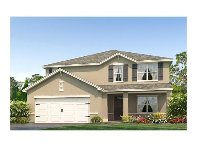 10657 Park Meadowbrooke Drive, Riverview, FL 33578 (MLS #T2875395) :: The Duncan Duo & Associates