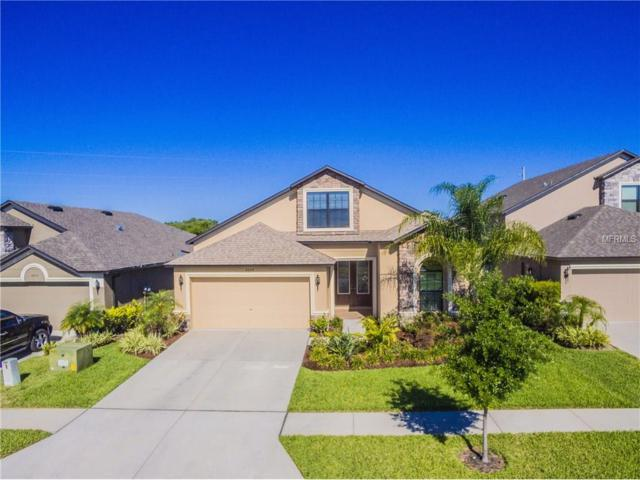 6649 Wild Elm Court, Wesley Chapel, FL 33545 (MLS #T2875976) :: The Duncan Duo & Associates