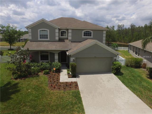 3311 Sisal Loop, Wesley Chapel, FL 33544 (MLS #T2876110) :: The Duncan Duo & Associates
