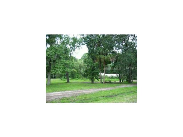 3915 Alafia Boulevard, Brandon, FL 33511 (MLS #T2876617) :: Griffin Group