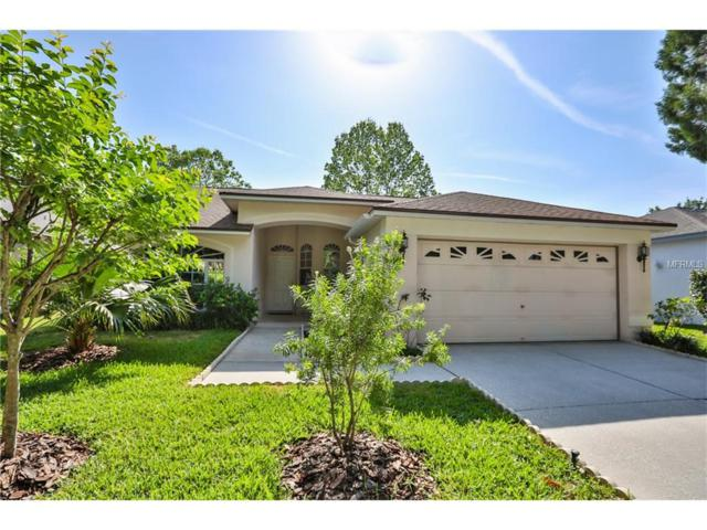 17709 Emerald Green Place, Tampa, FL 33647 (MLS #T2876626) :: Rutherford Realty Group | Keller Williams