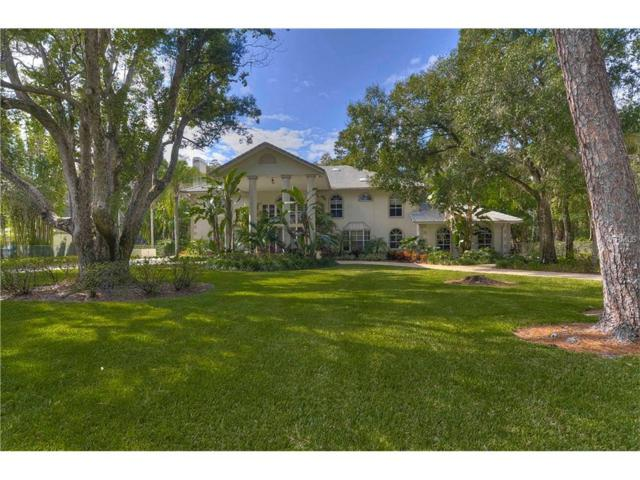 3505 Berger Road, Lutz, FL 33548 (MLS #T2876680) :: The Duncan Duo & Associates