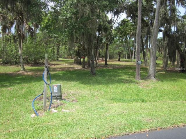 5352 Tropical Woods Court, Port Richey, FL 34668 (MLS #T2877019) :: Homepride Realty Services