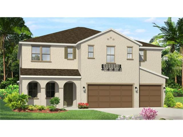 32196 Firemoss Lane, Wesley Chapel, FL 33543 (MLS #T2877093) :: The Duncan Duo & Associates