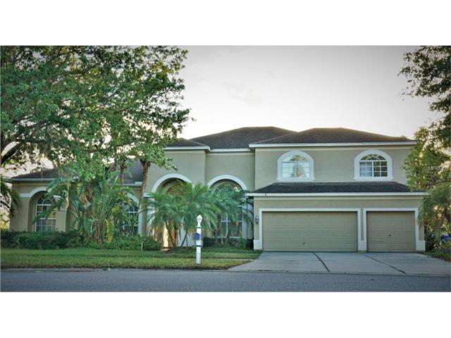 19102 Harborbridge Lane, Lutz, FL 33558 (MLS #T2877106) :: The Duncan Duo & Associates