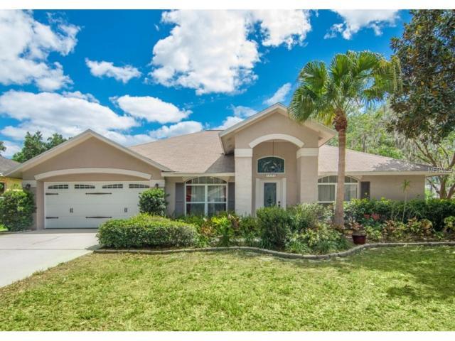 Tampa, FL 33625 :: The Duncan Duo & Associates