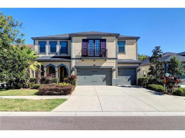 2617 Milford Berry Lane, Tampa, FL 33618 (MLS #T2878387) :: The Duncan Duo & Associates