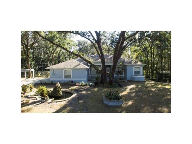 3404 Crenshaw Lake Road, Lutz, FL 33548 (MLS #T2878530) :: The Duncan Duo & Associates