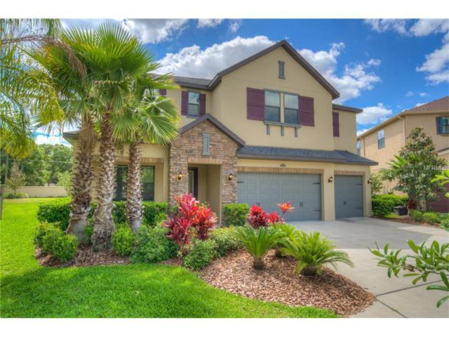 14237 Avon Farms Drive, Tampa, FL 33618 (MLS #T2879176) :: The Duncan Duo & Associates
