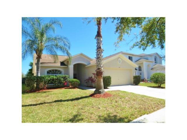 1314 Salt Clay Court, Wesley Chapel, FL 33544 (MLS #T2879183) :: The Duncan Duo & Associates