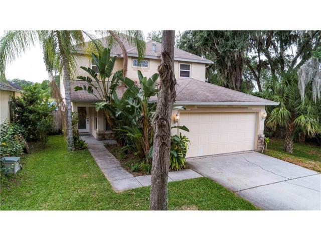 5601 Tanagerlake Road, Lithia, FL 33547 (MLS #T2879338) :: The Duncan Duo & Associates