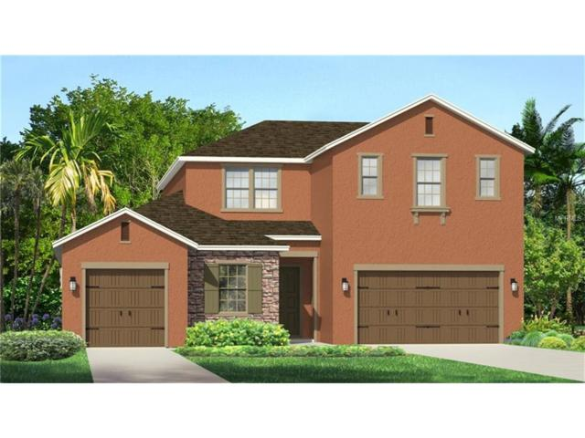 31988 Firemoss Lane, Wesley Chapel, FL 33543 (MLS #T2879618) :: The Duncan Duo & Associates