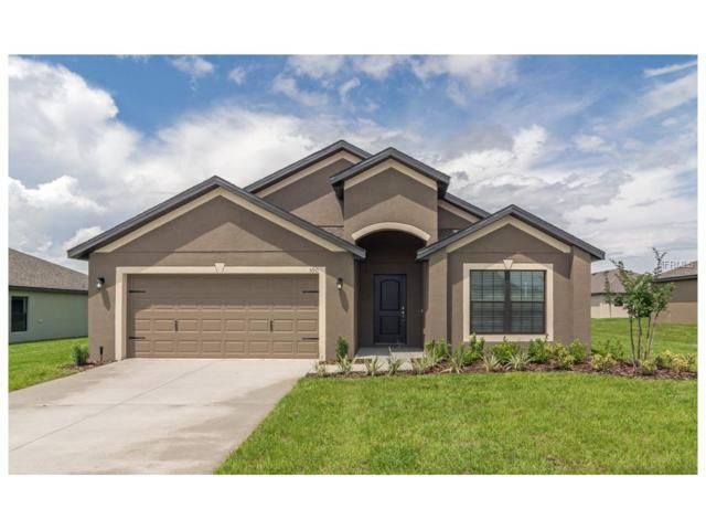 11823 Thicket Wood Drive, Riverview, FL 33579 (MLS #T2879951) :: The Duncan Duo & Associates