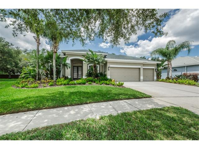 10204 Millport Drive, Tampa, FL 33626 (MLS #T2880336) :: The Duncan Duo & Associates