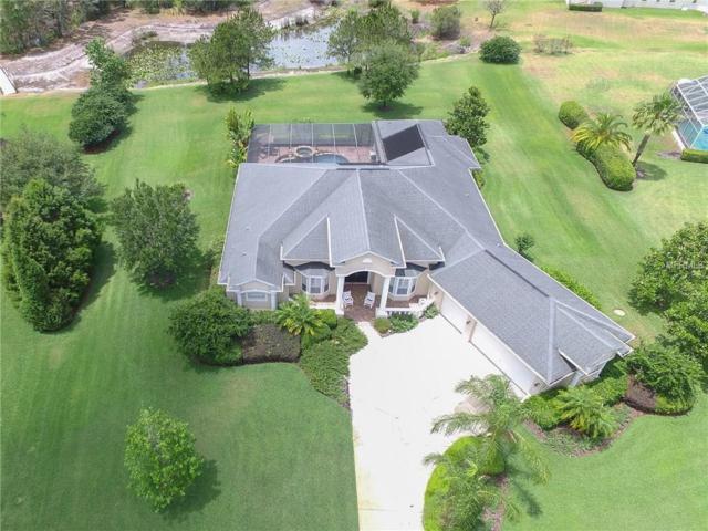 2611 Coastal Range Way, Lutz, FL 33559 (MLS #T2880533) :: The Duncan Duo & Associates