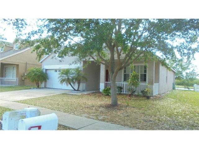 10830 Newbridge Drive, Riverview, FL 33579 (MLS #T2880622) :: The Duncan Duo & Associates