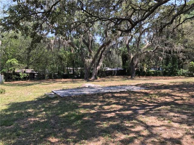 8612 Wickline Drive, Riverview, FL 33569 (MLS #T2880632) :: The Duncan Duo & Associates
