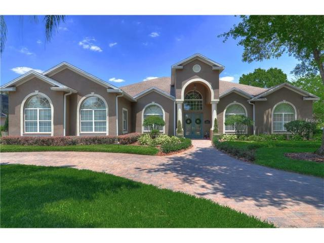 6247 Kingbird Manor Drive, Lithia, FL 33547 (MLS #T2880682) :: Team Bohannon Keller Williams, Tampa Properties