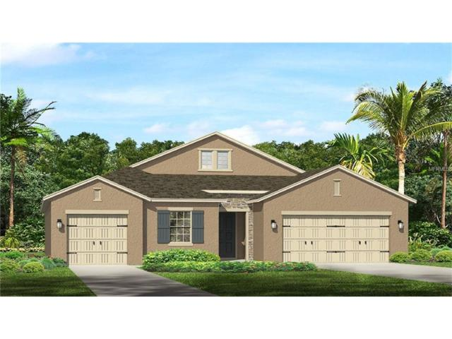3717 Wicket Field Road, Lutz, FL 33548 (MLS #T2881116) :: The Duncan Duo & Associates