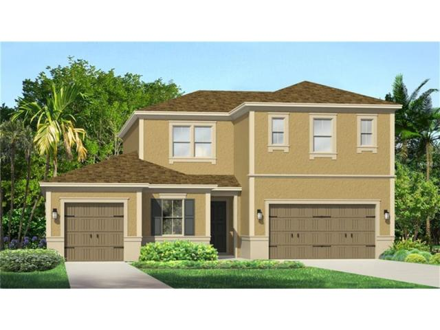 32183 Firemoss Lane, Wesley Chapel, FL 33543 (MLS #T2881222) :: The Duncan Duo & Associates