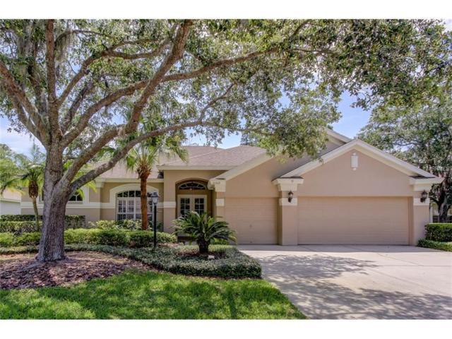 10309 Greenhedges Drive, Tampa, FL 33626 (MLS #T2881411) :: The Duncan Duo & Associates