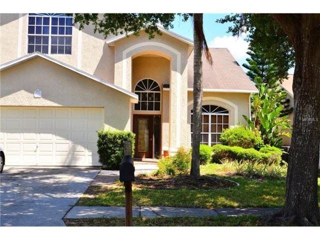 27355 New Smyrna Drive, Wesley Chapel, FL 33544 (MLS #T2881416) :: The Duncan Duo & Associates