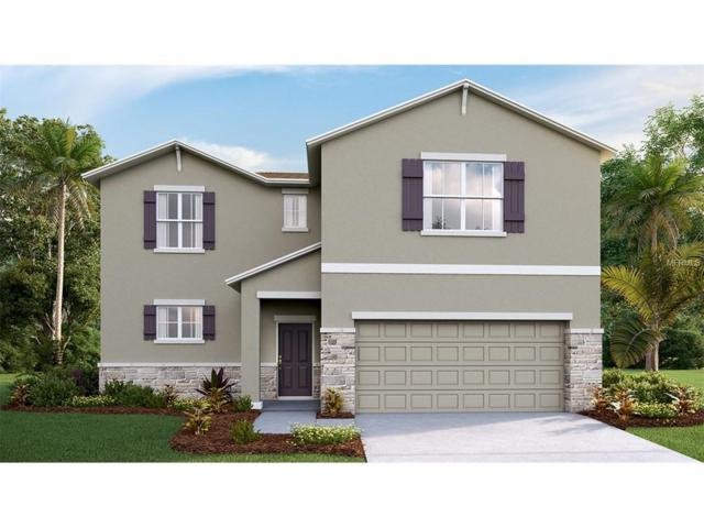 10603 Scenic Hollow Drive, Riverview, FL 33578 (MLS #T2881995) :: The Duncan Duo & Associates