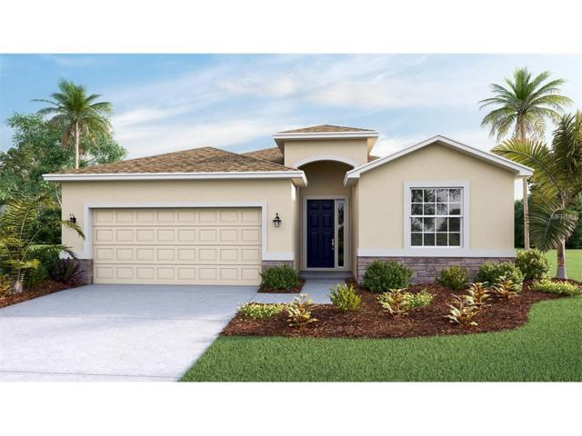 10607 Scenic Hollow Drive, Riverview, FL 33578 (MLS #T2882005) :: The Duncan Duo & Associates