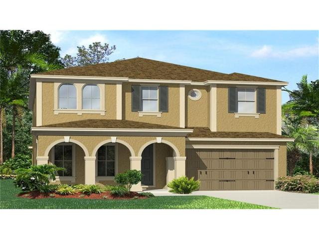 4567 Pensford Court, Wesley Chapel, FL 33543 (MLS #T2882105) :: The Duncan Duo & Associates