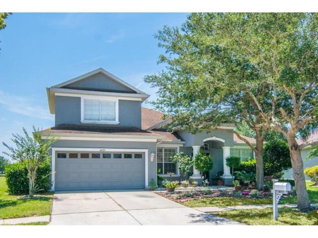 10725 Banfield Drive, Riverview, FL 33579 (MLS #T2882361) :: The Duncan Duo & Associates