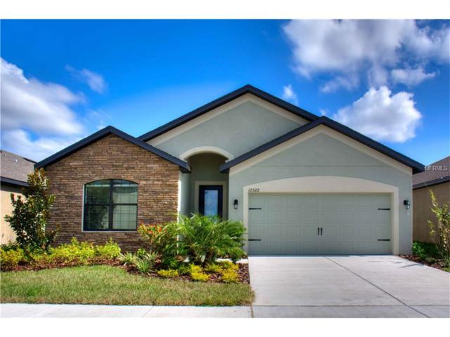 11852 Thicket Wood Drive, Riverview, FL 33579 (MLS #T2882810) :: The Duncan Duo & Associates