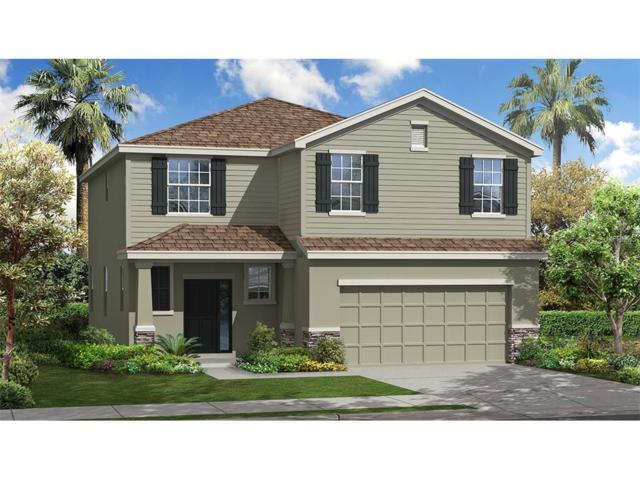 10515 Scenic Hollow Drive, Riverview, FL 33578 (MLS #T2883338) :: The Duncan Duo & Associates
