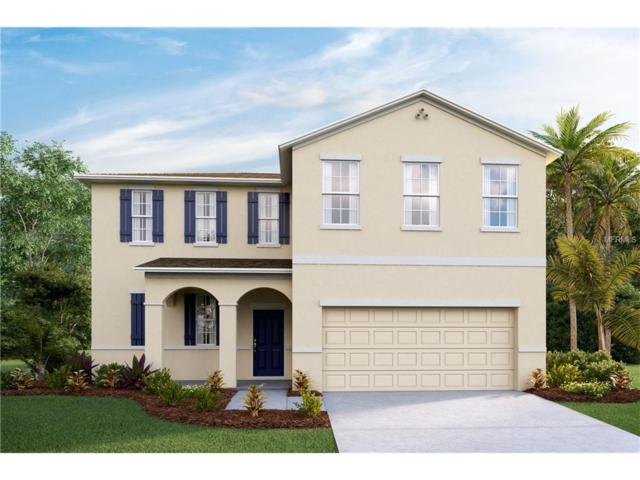 11521 Storywood Drive, Riverview, FL 33578 (MLS #T2883346) :: The Duncan Duo & Associates