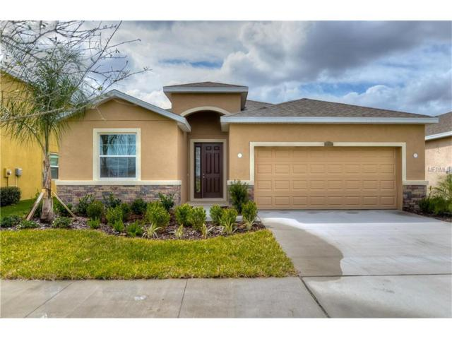11519 Storywood Drive, Riverview, FL 33578 (MLS #T2883355) :: The Duncan Duo & Associates