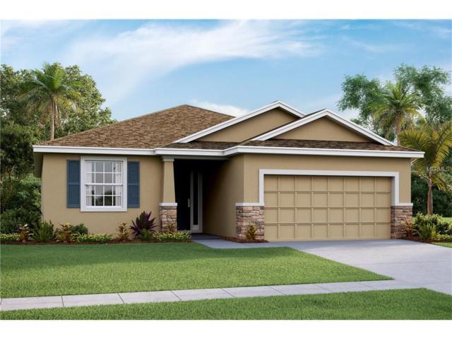 10605 Scenic Hollow Drive, Riverview, FL 33578 (MLS #T2883367) :: The Duncan Duo & Associates