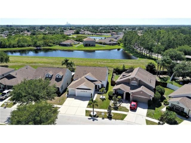 10866 Newbridge Drive, Riverview, FL 33579 (MLS #T2883375) :: The Duncan Duo & Associates